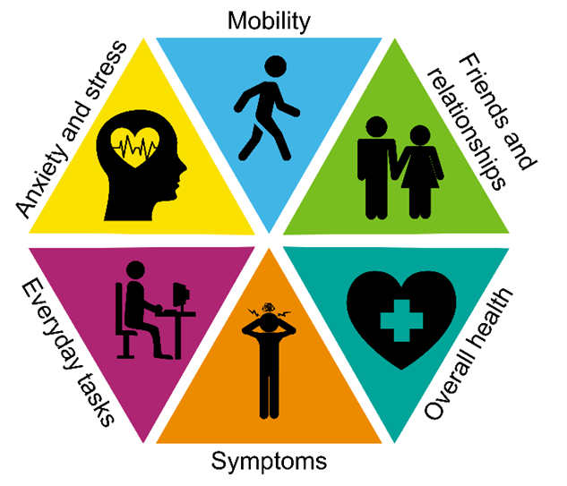 A diagram showing 6 points of Anxiety and stress, Mobility, Friends and relationships, Overall health, Symptoms, Everyday Tasks